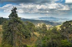 Troodos山风景  免版税库存图片