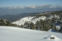 Troodos用雪盖的山顶面有巨大下坡看法 库存图片
