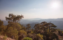Troodos, Cyprus Royalty Free Stock Photo