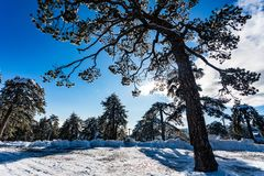 Free Troodos Is The Largest Mountain Range In Cyprus Stock Photos - 112250133
