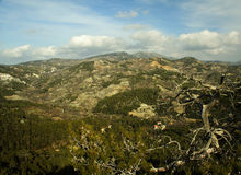 Troodos Mountain Royalty Free Stock Photography