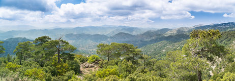 Troodos mountains, Cyprus. The tops of the Troodos mountains, Cyprus Royalty Free Stock Photos