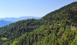 Troodos Mountains Royalty Free Stock Photography