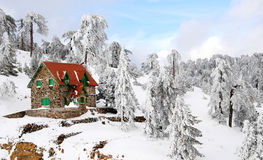 Troodos mountains in snow. House surrounded by snow in Troodos mountains, Cyprus Royalty Free Stock Photos