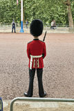 Troop Guard near Buckingham Palace Royalty Free Stock Photography