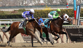 Troop Support Wins a Claiming Race. JAMAICA, NY - APR 9: Troop Support, #9, under jockey Cornelio Velazquez, wins a claiming race at Aqueduct Race Track on Apr 9 Stock Photos