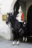 Trooper of the Household Cavalry Royalty Free Stock Photos