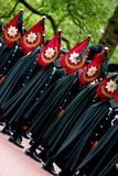 Trooping The Colour Royalty Free Stock Photo
