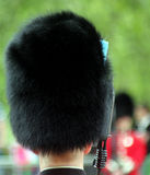 Trooping The Colour Royalty Free Stock Photography