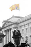 Trooping Of The Colour Stock Images