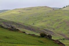 Troosteloos groen landschap in Turkije royalty-vrije stock fotografie