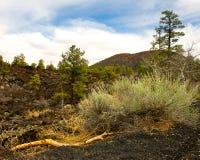 Troosteloos landschap van een uitgestorven vulkaan. Stock Afbeelding