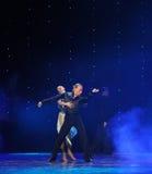 Trop merveilleux pour la magie de mots-Le de la danse du monde de l'Autriche de danse-le d'amour-flamant Photographie stock