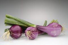 Tropea onions Stock Photo