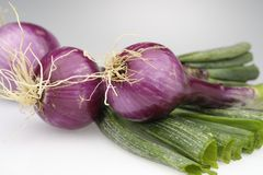 Tropea onions Royalty Free Stock Photography