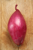 Tropea red onion. On a wooden cutting board Stock Image
