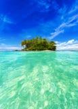 Tropeninsel mit exotischen Grünpflanzen und Kokosnussbäumen Stockfotografie