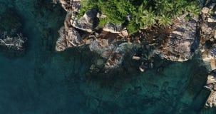 Tropeninsel mit Meer und Palme genommen vom Brummen  St- Pierreinsel stock video footage