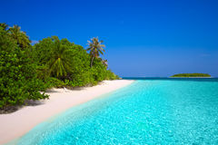 Tropeninsel mit sandigem Strand mit Palmen und Türkis c Stockbild