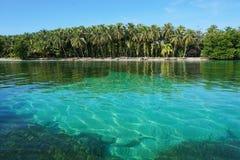 Tropeninselufer mit üppiger Vegetation Panama lizenzfreie stockfotografie