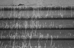 Tropfen auf dem Zaun Stockbilder