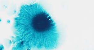 Tropfen der blauen Tinte des Türkises auf nasser Draufsicht des Weißbuches Stockbild