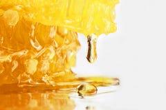 Tropfen des Honigbratenfetts von der Bienenwabennahaufnahme Stockbilder