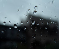 Tropfen des Regens Stockfotografie