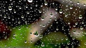 Tropfen des Regens auf dem Glas auf dem Hintergrund der Natur stock video footage