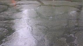 Tropfen des starken Regens auf Asphalt stock footage