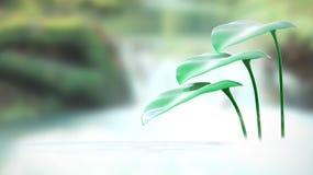 Tropfen und Blätter nahe einem Wasserfall vektor abbildung