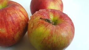Tropfenfänger-Wasserzeitlupe der Apfelfrucht nasse stock video footage