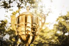 Trophée d'or photographie stock