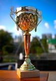 trophée d'or Image libre de droits
