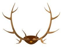 Trophée de chasse Photos stock