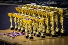 trophées Photos libres de droits