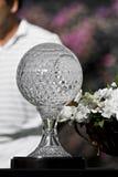 Trophée d'aînés d'enjeu de golf de Nedbank - NCGs2010 Photos libres de droits