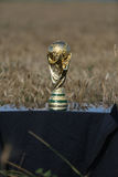 Trophée de coupe du monde Image stock