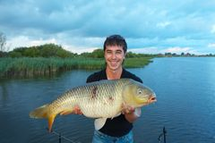 Trophey carp Stock Photography