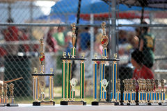 The Trophies Stock Image