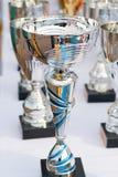 trophies Royalty-vrije Stock Afbeeldingen