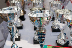 trophies Royalty-vrije Stock Afbeelding