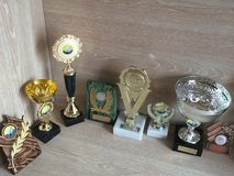 trophies Fotografie Stock Libere da Diritti