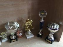 trophies Immagine Stock Libera da Diritti