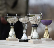 Trophies. Standing on a table Stock Images