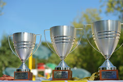 Trophies of Beach Tennis World Team Championship 2014 Stock Image