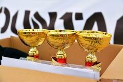 Trophies Stock Image