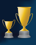 Trophy 04. Two kinds of Cups, special for champion Royalty Free Stock Image