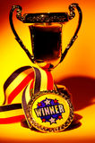 Trophy. With Creative Lighting Royalty Free Stock Images