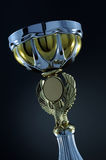 Trophy cup Royalty Free Stock Image